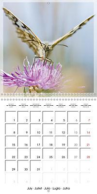 Butterflies Beauty of Nature (Wall Calendar 2019 300 × 300 mm Square) - Produktdetailbild 7