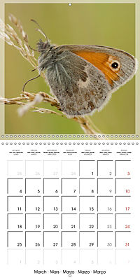 Butterflies Beauty of Nature (Wall Calendar 2019 300 × 300 mm Square) - Produktdetailbild 3