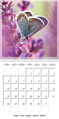 Butterflies Beauty of Nature (Wall Calendar 2019 300 × 300 mm Square) - Produktdetailbild 8