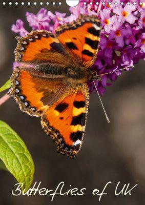 Butterflies of UK (Wall Calendar 2019 DIN A4 Portrait), Dalyn