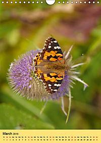 Butterflies of UK (Wall Calendar 2019 DIN A4 Portrait) - Produktdetailbild 3