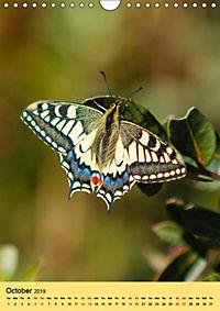 Butterflies of UK (Wall Calendar 2019 DIN A4 Portrait) - Produktdetailbild 10
