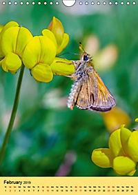 Butterflies of UK (Wall Calendar 2019 DIN A4 Portrait) - Produktdetailbild 2