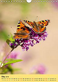 Butterflies of UK (Wall Calendar 2019 DIN A4 Portrait) - Produktdetailbild 5