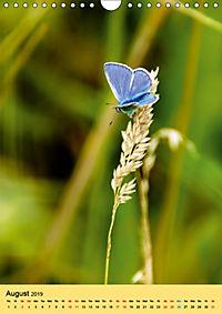 Butterflies of UK (Wall Calendar 2019 DIN A4 Portrait) - Produktdetailbild 8