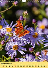 Butterflies of UK (Wall Calendar 2019 DIN A4 Portrait) - Produktdetailbild 11