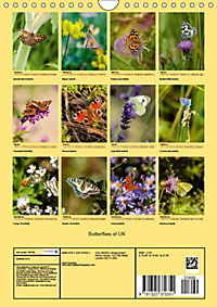 Butterflies of UK (Wall Calendar 2019 DIN A4 Portrait) - Produktdetailbild 13