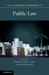 Cambridge Companions to Law: Cambridge Companion to Public Law