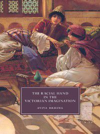 Cambridge Studies in Nineteenth-Century Literature and Culture: The Racial Hand in the Victorian Imagination, Aviva Briefel