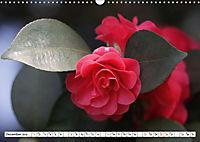 Camellias A Bright Spot in the Dark Season (Wall Calendar 2019 DIN A3 Landscape) - Produktdetailbild 12