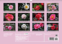 Camellias A Bright Spot in the Dark Season (Wall Calendar 2019 DIN A3 Landscape) - Produktdetailbild 13
