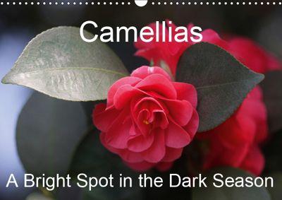 Camellias A Bright Spot in the Dark Season (Wall Calendar 2019 DIN A3 Landscape), Gisela Kruse