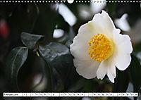 Camellias A Bright Spot in the Dark Season (Wall Calendar 2019 DIN A3 Landscape) - Produktdetailbild 2