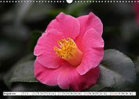 Camellias A Bright Spot in the Dark Season (Wall Calendar 2019 DIN A3 Landscape) - Produktdetailbild 8
