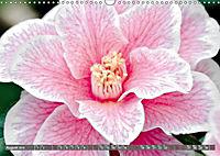 Camellias (Wall Calendar 2019 DIN A3 Landscape) - Produktdetailbild 8