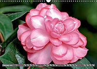 Camellias (Wall Calendar 2019 DIN A3 Landscape) - Produktdetailbild 2