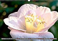 Camellias (Wall Calendar 2019 DIN A3 Landscape) - Produktdetailbild 4