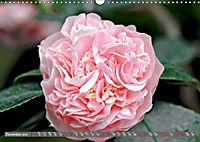 Camellias (Wall Calendar 2019 DIN A3 Landscape) - Produktdetailbild 12