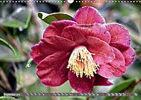 Camellias (Wall Calendar 2019 DIN A3 Landscape) - Produktdetailbild 9