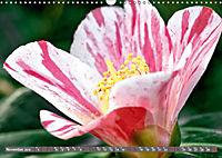 Camellias (Wall Calendar 2019 DIN A3 Landscape) - Produktdetailbild 11