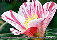 Camellias (Wall Calendar 2019 DIN A4 Landscape) - Produktdetailbild 11