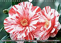 Camellias (Wall Calendar 2019 DIN A4 Landscape) - Produktdetailbild 5