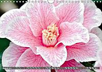 Camellias (Wall Calendar 2019 DIN A4 Landscape) - Produktdetailbild 8