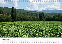 Camino di Assisi - FranziskuswegAT-Version (Wandkalender 2019 DIN A4 quer) - Produktdetailbild 3