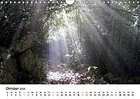 Camino di Assisi - FranziskuswegAT-Version (Wandkalender 2019 DIN A4 quer) - Produktdetailbild 10