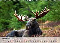 Canada Impressions (Wall Calendar 2019 DIN A3 Landscape) - Produktdetailbild 10