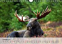 Canada Impressions (Wall Calendar 2019 DIN A4 Landscape) - Produktdetailbild 10