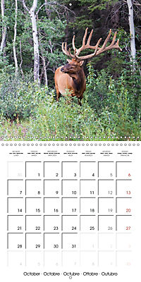 Canada Rocky Mountains National Parks (Wall Calendar 2019 300 × 300 mm Square) - Produktdetailbild 10