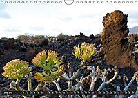 Canarian impressions Tenerife - El Hierro / UK-version (Wall Calendar 2019 DIN A4 Landscape) - Produktdetailbild 7