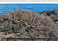 Canarian impressions Tenerife - El Hierro / UK-version (Wall Calendar 2019 DIN A4 Landscape) - Produktdetailbild 1