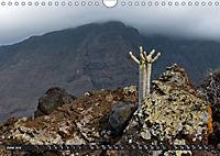Canarian impressions Tenerife - El Hierro / UK-version (Wall Calendar 2019 DIN A4 Landscape) - Produktdetailbild 6