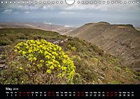 Canary Islands, Spring, sun and sea (Wall Calendar 2019 DIN A4 Landscape) - Produktdetailbild 5
