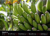 Canary Islands, Spring, sun and sea (Wall Calendar 2019 DIN A4 Landscape) - Produktdetailbild 8