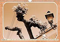 Capri Memories (Wall Calendar 2019 DIN A4 Landscape) - Produktdetailbild 10