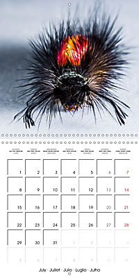 Caterpillars Natural Wonders (Wall Calendar 2019 300 × 300 mm Square) - Produktdetailbild 7