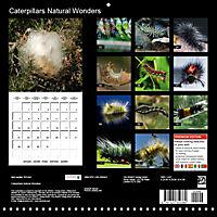 Caterpillars Natural Wonders (Wall Calendar 2019 300 × 300 mm Square) - Produktdetailbild 13