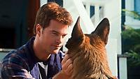 Cats & Dogs 2 - Die Rache der Kitty Kahlohr - Produktdetailbild 10
