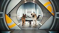 Cats & Dogs 2 - Die Rache der Kitty Kahlohr - Produktdetailbild 3