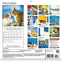 Cats in Greece (Wall Calendar 2019 300 × 300 mm Square) - Produktdetailbild 13