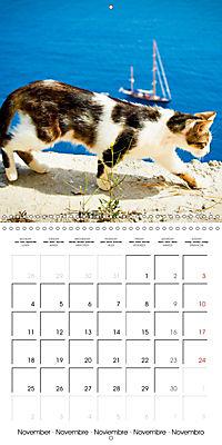 Cats in Greece (Wall Calendar 2019 300 × 300 mm Square) - Produktdetailbild 11