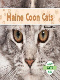Cats: Maine Coon Cats, Meredith Dash