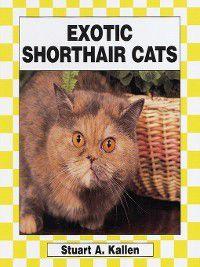 Cats Set 2: Exotic Shorthair, Stuart A. Kallen
