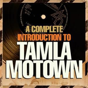 CD1 - Milestones And Influences, Diverse Interpreten