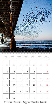 Ceredigion 2019 (Wall Calendar 2019 300 × 300 mm Square) - Produktdetailbild 12