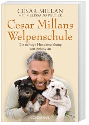 Cesar Millans Welpenschule, Cesar Millan, Melissa Jo Peltier