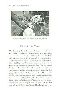 Cesar Millans Welpenschule - Produktdetailbild 2